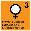 3 UN gender equality